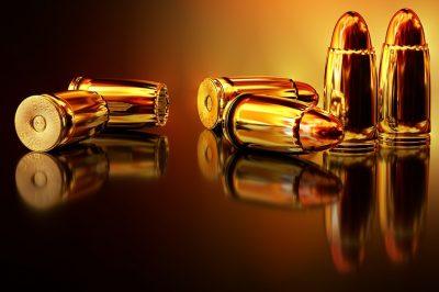 Loja de armas e munições: uma grande oportunidade mas que requer muita atenção na gestão